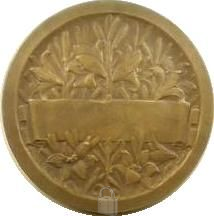 Jeanne d Arc - Centre Jeanne d Arc Orléans - Champ de fleurs de lys - graveur Morlon 3- Médaille n°57